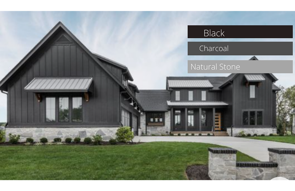 Bold modern farmhouse