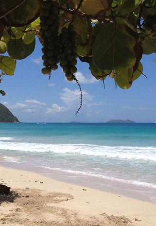 Tortola strand