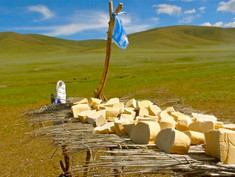 Fermented Milk Products from All Over the World. Khuruud (Mongolia)