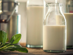 Fermented Milk Products from All Over the World. Xynogalo or Xynogala (ξυνόγαλα) Greece