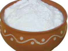 Fermented Milk Products from All Over the World. Dahi (India)