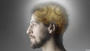 Objets perdus : le cerveau se mobiliserait pour les retrouver, selon une étude américaine