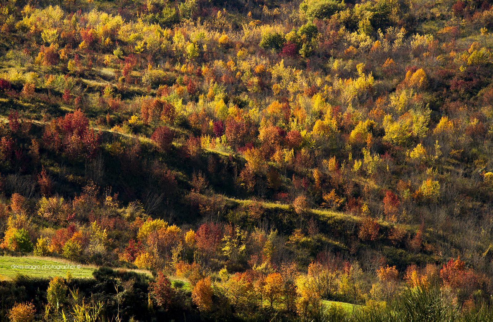 Abruzzo / Denis Magro photographer