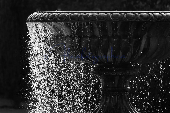 Regent's Park Fountain