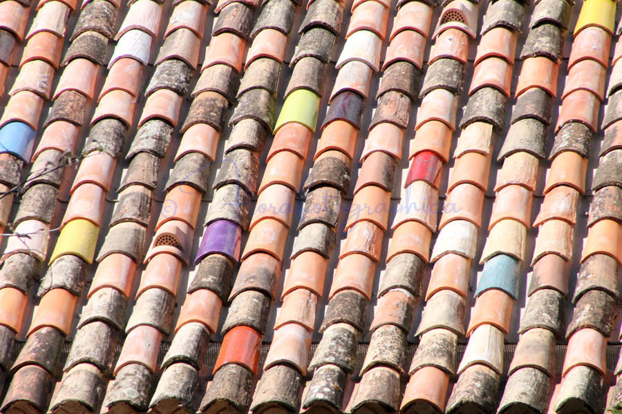 Provencal roof