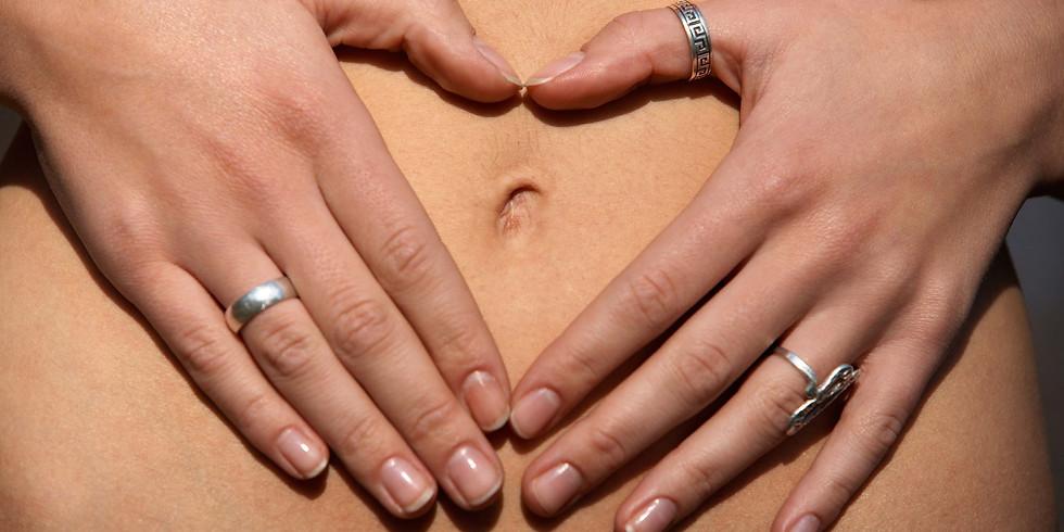 Menopause Nutrition System Workshop