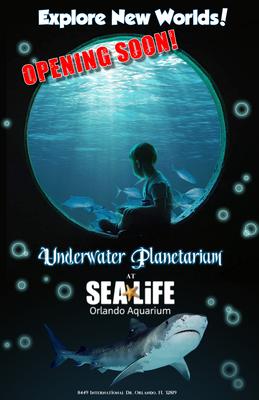 Undersea Exhibit Poster