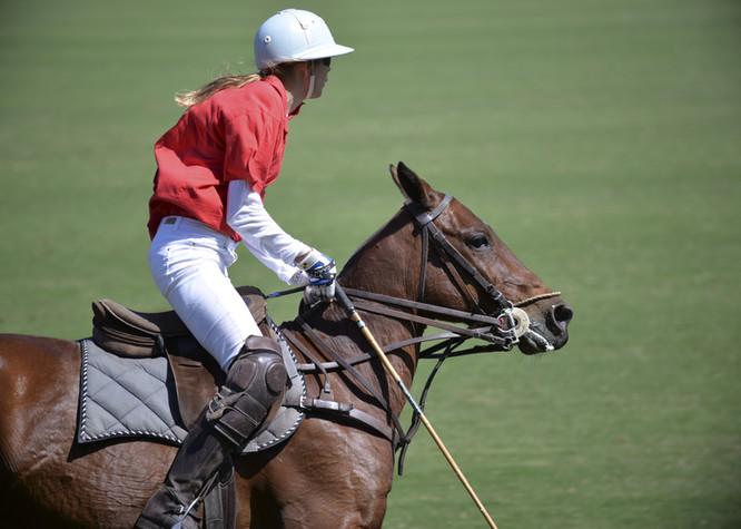 Riviera Horses San Giovanni in Marignano