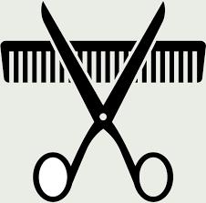 Shampoo, Haircut, Blowdry