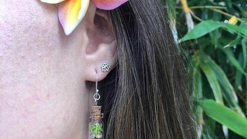 Silver Earring Orange Black Rock