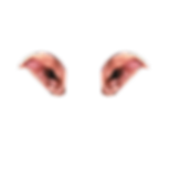 Pointed-Ear-Style-A.png