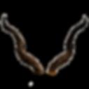 Horns-C.png