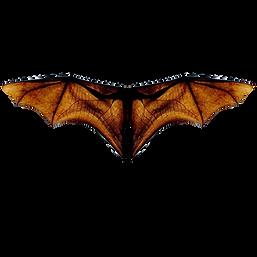 Bat-Wings.png