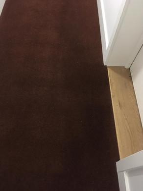 Carpet Cleaning pt 3