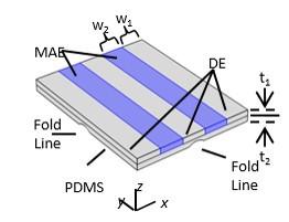 Multifield-Active Materials