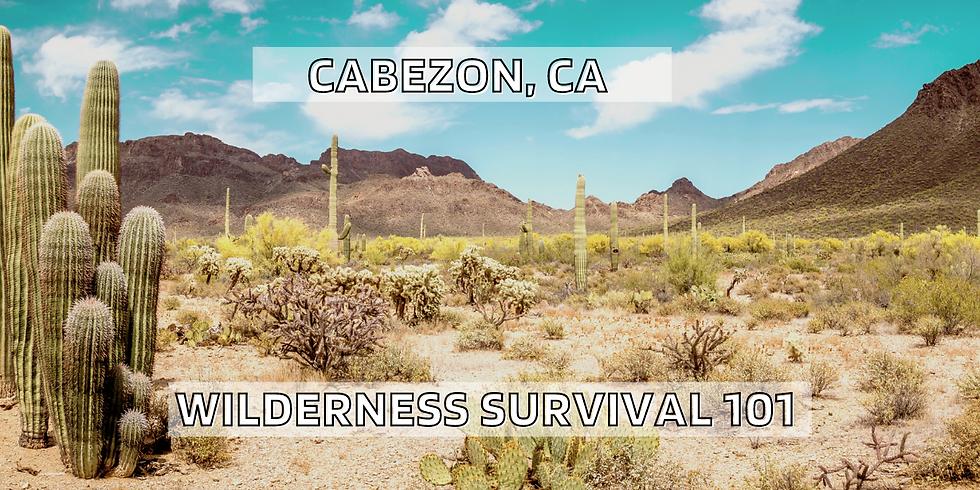 Wilderness Survival 101(Desert)