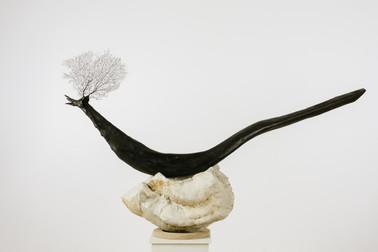 Nestled Bird II  - Collectors s