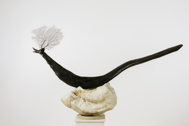 Nestled Bird II  - Collectors Series