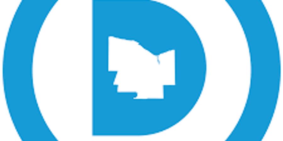 2020 MCDC Designating Convention