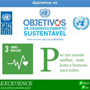 Programa de apoio da Excellence aos ODS do PNUD/ONU