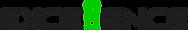 Logotipo Excellence - original sem fundo.png