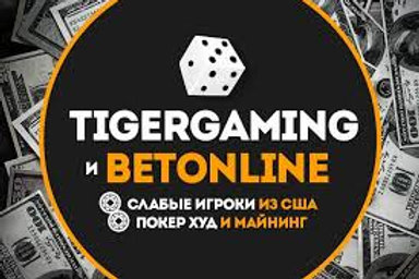 65 000 TigerGaming Casino DATA