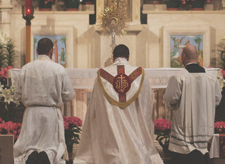 Dr. Pauley Brings Life to the Church's Liturgical-Catechetical Tradition
