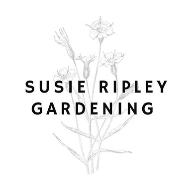 Susie-ripley-gardening-fodda-feedingthee