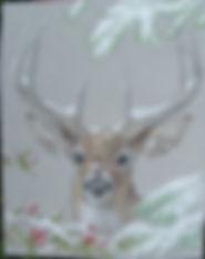 CP30 Winter Buck