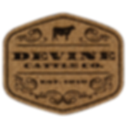 Leatherette_CorkBlack_2.png
