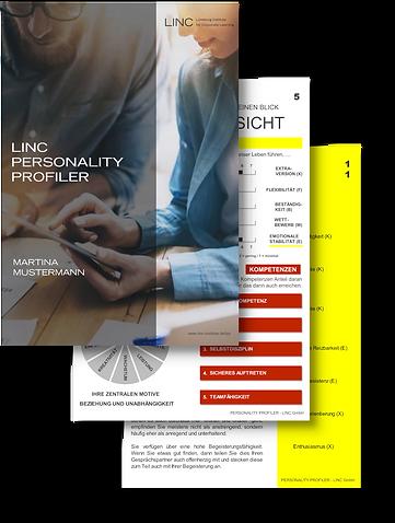 Mandy Klees - LINC Personality Profiling
