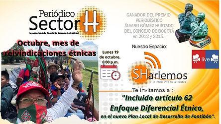 REINVIDICACIONES ETNICAS-SHarlemos.jpg