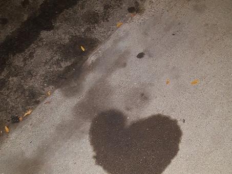 Oil spots on the street