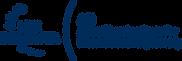 IDC_AEI-logo_eng_Bl.png