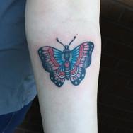 Trad Butterfly.jpg