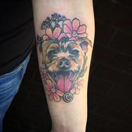 neotrad dog portrait 1.jpg