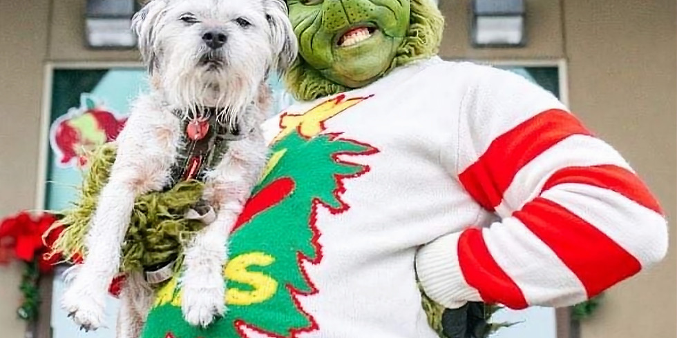Photos With The Grinch at The Crossfield Christmas Market
