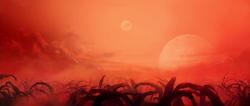 Jungles of Shajjyn-5