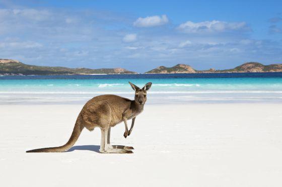 AUSTRALIA 2019 AKHET VIAJES.jpg