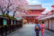 JAPON AKHET VIAJES.jpg