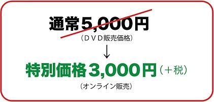 price3000-min.png