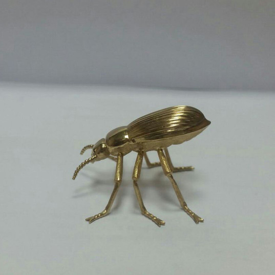 Darkling Emarati Beetle in gold