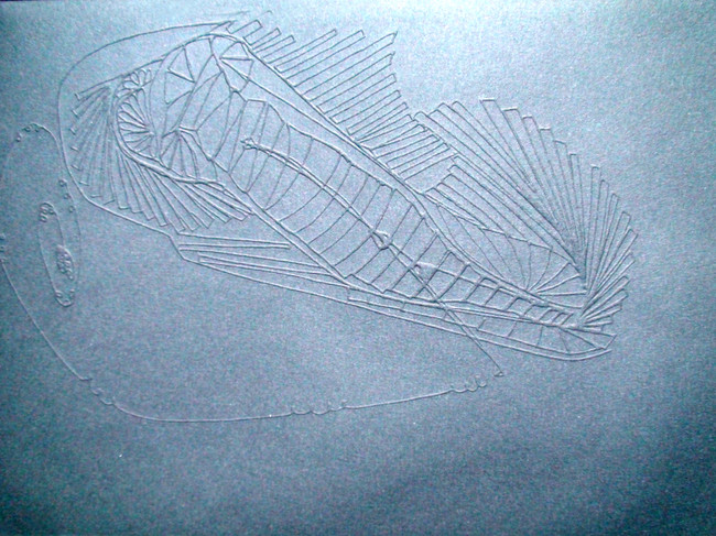 Automatism, drawing