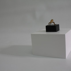 Trophy detaile, cometioned by Emirates Fine Arts Society for its 34th anual exhibition