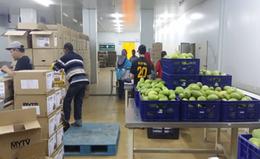 Ecobuild Foods Processing Plant 3
