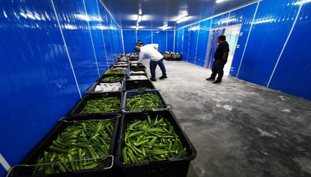 Ecobuild Foods Processing Plant 2