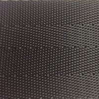 Style 919P Polyester Webbing