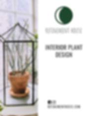 Interior plant design.jpg
