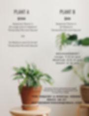 Interior plant design-2.jpg