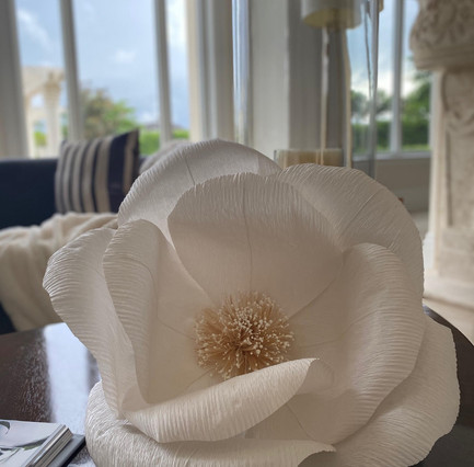 Living Room - Magnolia